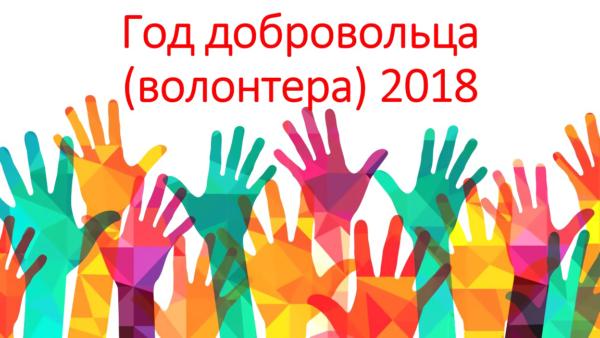 Год добровольца 2018